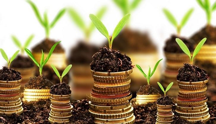 Katılım Bankaları Finans Şirketleri Grubunda mıdır?, Bir Finansçı