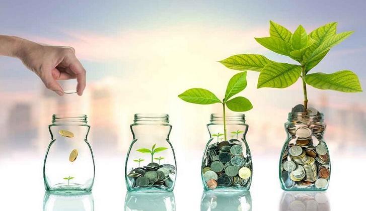 Genç Biri Parasını Nasıl Değerlendirmeli?, Bir Finansçı