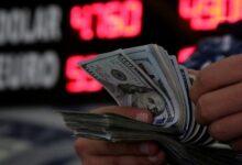 Döviz Fiyatlarını Etkileyen Faktörler ve Kur Tahmini, Bir Finansçı