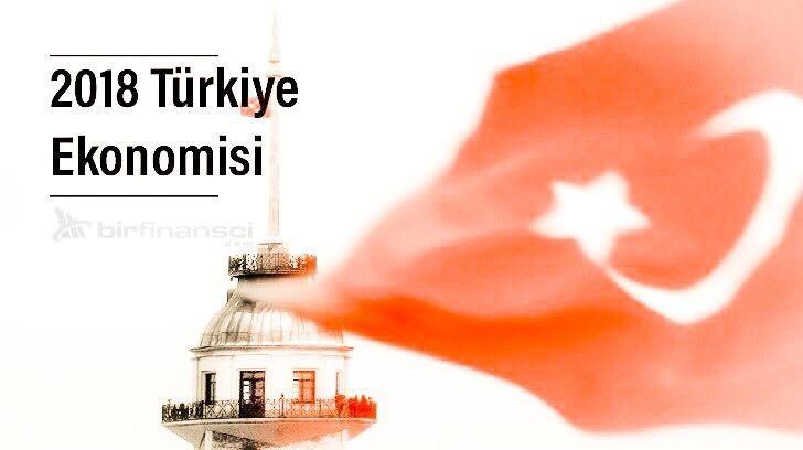 2018 Türkiye Ekonomisi ve Tüketici Güven Endeksi, Bir Finansçı