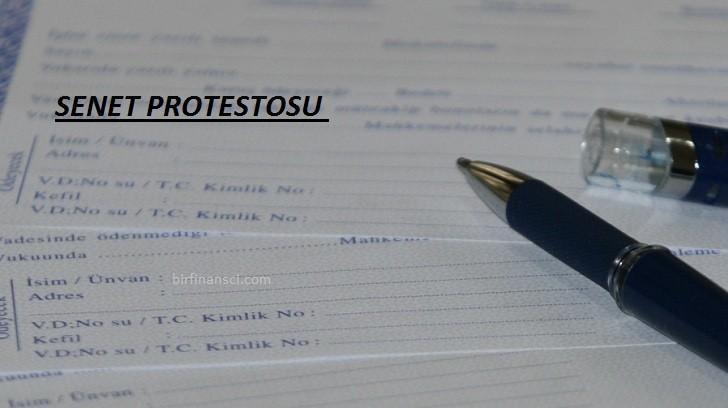 Senet Protestosu Nedir?, Bir Finansçı