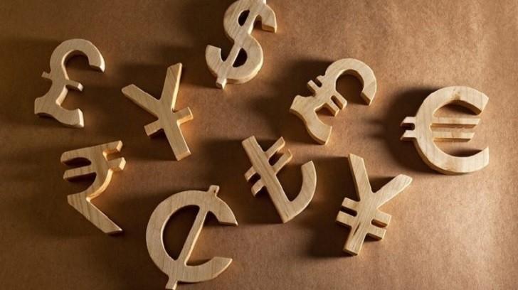 Bankalarda  Döviz Alım-Satım ve Parite İşlemleri, Bir Finansçı