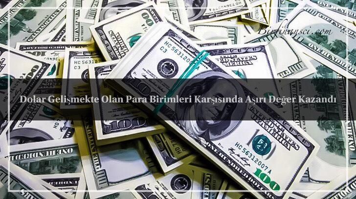 Dolar Gelişmekte Olan Para Birimleri Karşısında Aşırı Değer Kazandı, Bir Finansçı