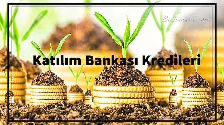 Katılım Bankası Kredi-Finansman Çeşitleri, Bir Finansçı