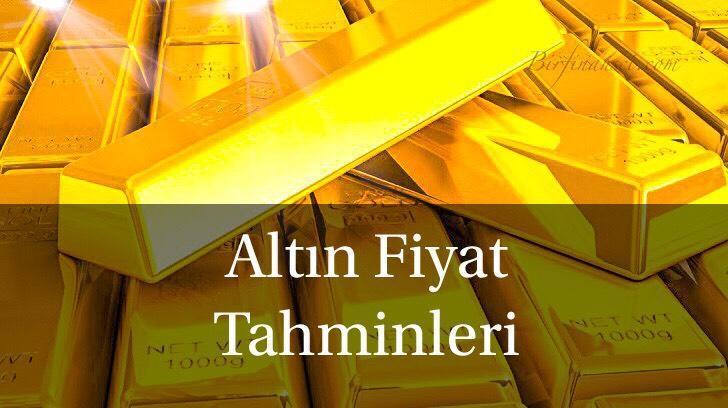 Altın Fiyat Tahminleri, Bir Finansçı