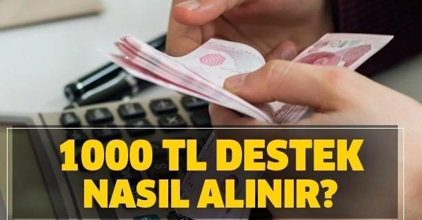 1.000 TL Nakit Destek Nasıl Alınır? 1000 Lira Maddi Yardım, Bir Finansçı