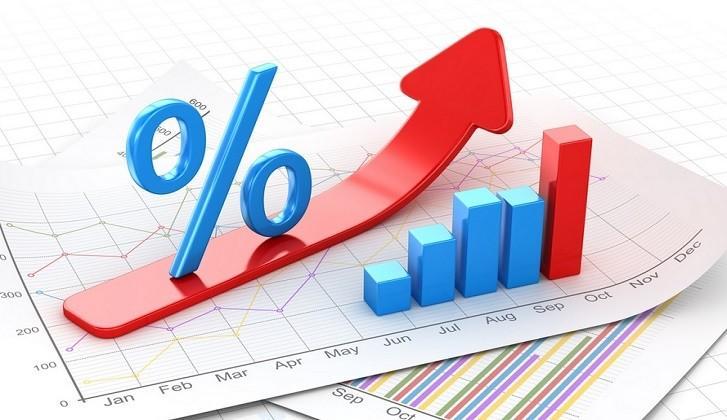 Bankalar Neden Faizsiz Kredi Vermez?, Bir Finansçı