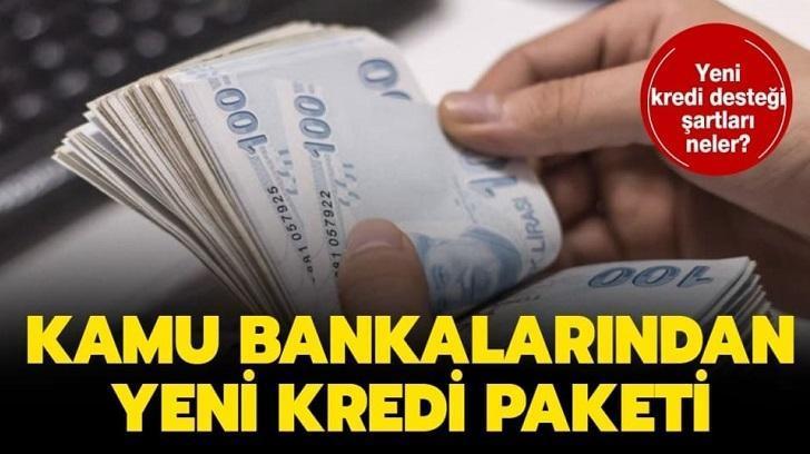 Kamu Bankalarından Kredi, Bir Finansçı