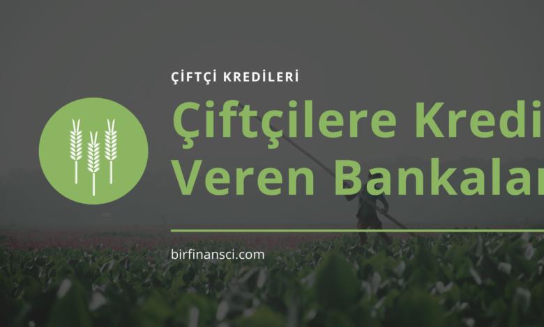 Çiftçilere Kredi Veren Bankalar ve Şartları 2021, Bir Finansçı