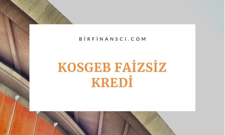 KOSGEB Faizsiz Kredi Desteği Başvurusu ve Şartları, Bir Finansçı