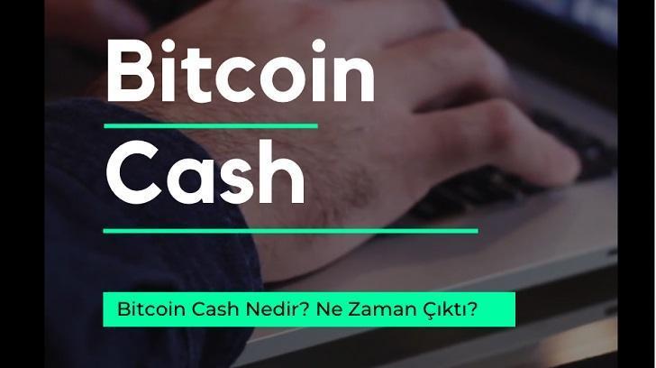 Bitcoin Cash Nedir? Ne Zaman Çıktı?, Bir Finansçı