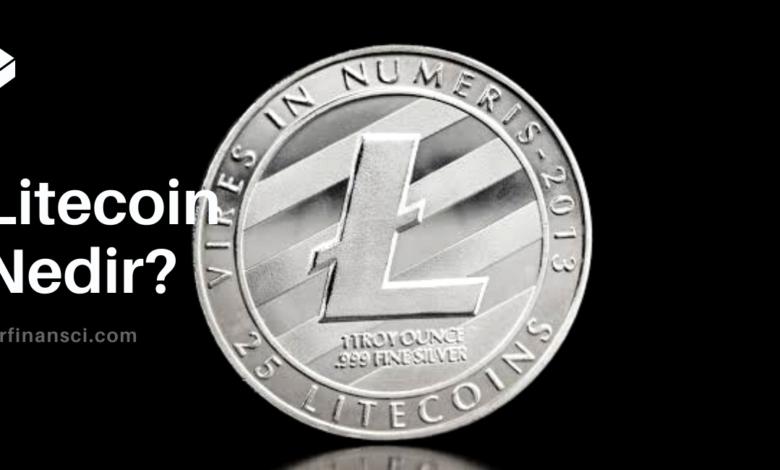 Litecoin Nedir? LTC Nasıl Alınır ve Satılır?, Bir Finansçı