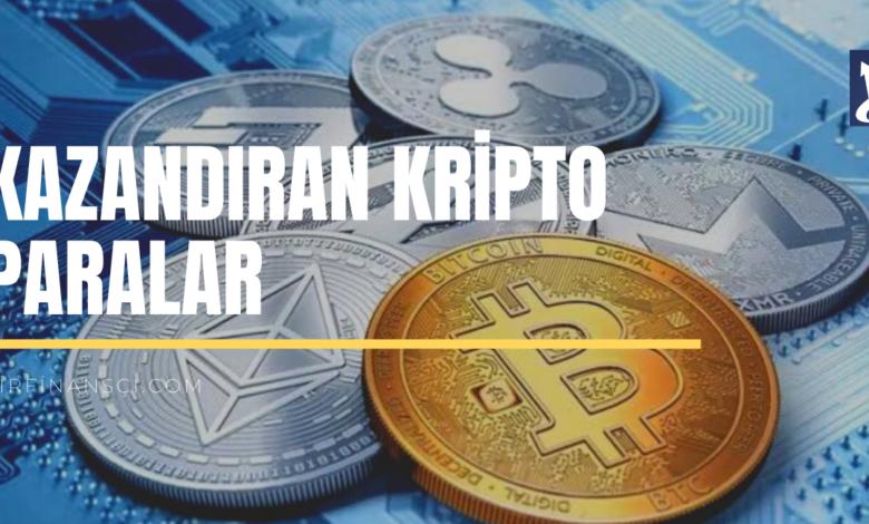 En Çok Kazandıran Kripto Paralar Hangileri?, Bir Finansçı